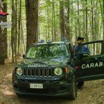 Camigliatello Silano: spaccio di sostanze stupefacenti, i carabinieri arrestano 2 persone e ne denunciano un'altra
