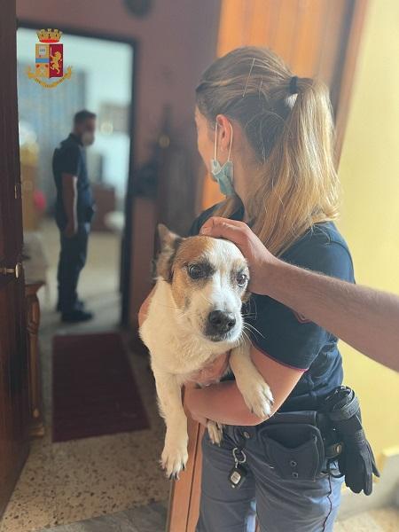cane salvato - polizia stato reggio