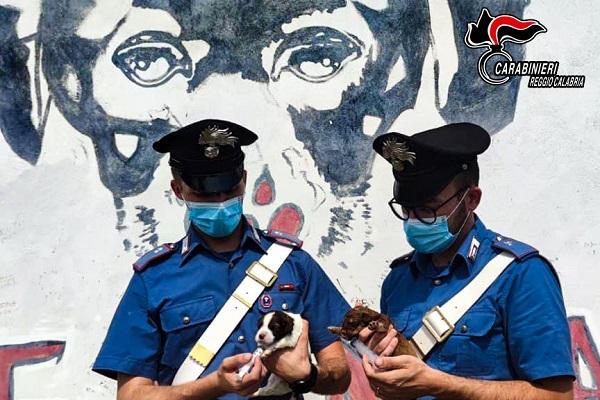 carabinieri brancaleone