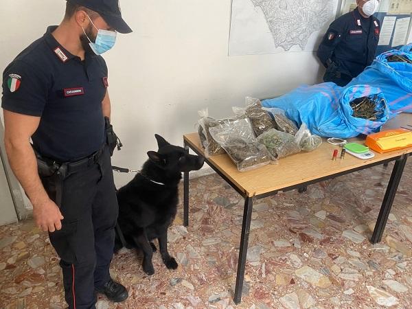 sequestro carabinieri - cetraro